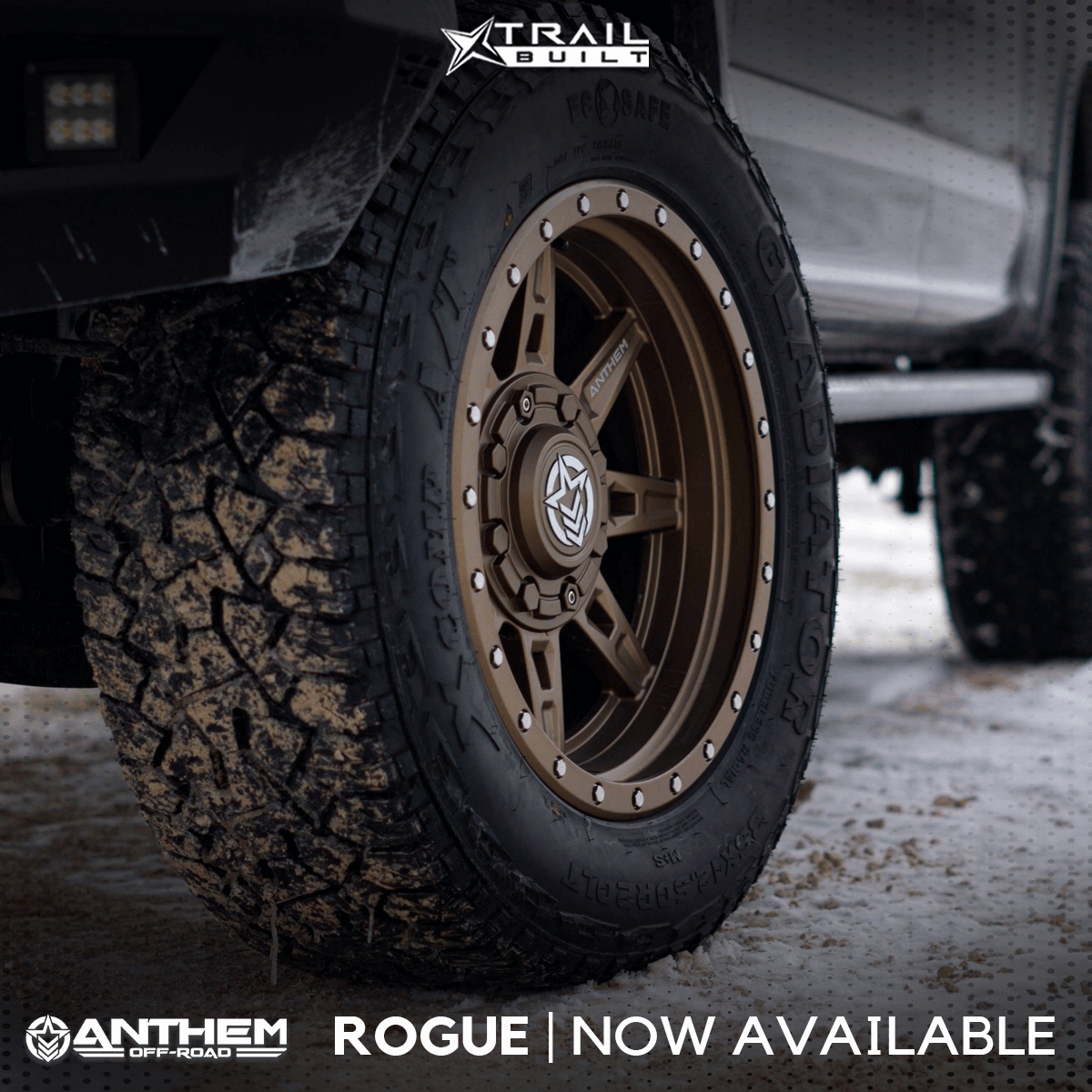 Go Rogue: The Brand New Anthem Off-Road Rogue